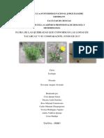 Comparacion  de Flora Integrado de Las Quebradas de Lomas de Tacahuay