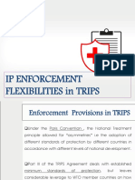 Enforcement Flexibilities in TRIPS
