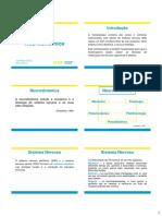 SR 1 - Neurodinamica.pdf