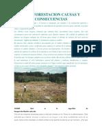 La Deforestacion Causas y Consecuencias