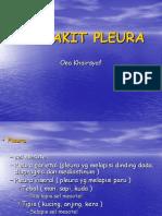 PE_SP_okt_2013