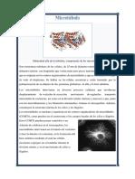 Microtúbulo
