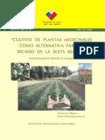 cultivo de plantas medicinales en Chile.pdf