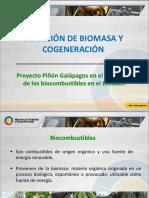 6 MEER Proyecto-Piñón-biocombustibles Daniel Fierro