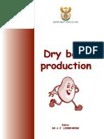 drybeans2