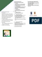 275259374-Leaflet-Vit-A.doc