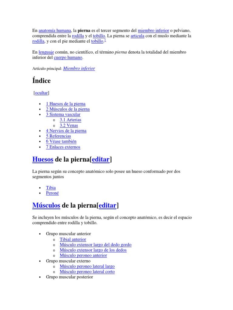 Lujo Lo Que Quiere Decir Posterior En La Anatomía Ideas - Anatomía ...