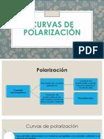 Curvas de Polarización