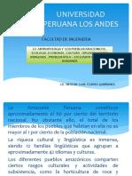 Comunidades Amazonicas Amazonicas Copia