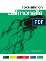 Focus on Salmonella