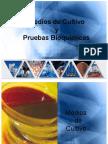 medios-de-cultivo-y-pruebas-bioquimica-1225658128608610-9.pdf