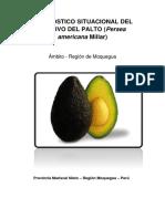 Diagnostico Situacional Del Cultivo Del Palto(Moquegua)