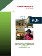 pe-sbsap-ayacucho-es.pdf