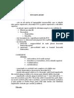 Anatomie LP7 nervos.doc