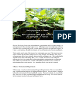 GrowingTheobromaCacaofromseedneednotbeamystery.pdf