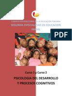 C.1_Y_C.2_PSICOLOGIA_DEL_DESARROLLO_Y_PROCESOS_COGNITIVOS.pdf