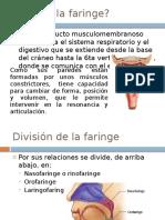 La Faringe.pptx
