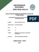 Informe Culantro- Lucy Bravo Carrasco