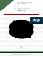caliza