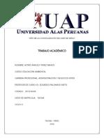 TRABAJO ACADÉMICO EDUCACIÓN AMBIENTAL.docx