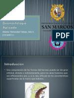 geomorfologia aplicada.pptx
