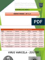 Herpesvirus Tipo 3 y 4 (1)