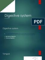 Digestive Sstmm