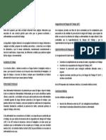 Definiciones de Seguridad e Higiene en Argentina