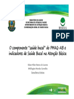 componente saude bucal do pmaq - AB.pdf
