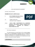 Informe Tecnico Visita a Carretera Chongos.