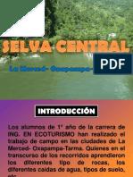 Selva central.pptx