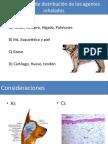 Mecanismo de Distribución de Los Agentes Inhalados FARMACOS II