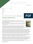 Geoingeniería y modificación del clima   Ecologistas en Acción
