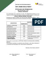 Certificados de Promocion - Copia