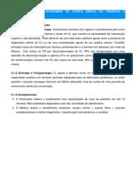 Anexo-VII-PROTOCOLOS-E-FLUXOGRAMAS-DE-CLÍNICA-MÉDICA-NA-URGÊNCIA-E-EMERGÊNCIA.pdf