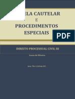 OLIVEIRA, Lucas de. Processo Cautelar e Procedimentos Especiais. Juiz de Fora, 2014. (1)