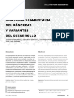 Anatomia Segmentaria