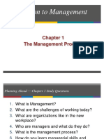 Chapter 1 - The Management Process