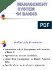 Risk Management System in Banks