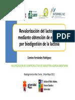 04 Camino Fernandez Revalorizacion Del Lactosuero
