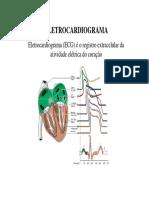 3-ECG-09.pdf
