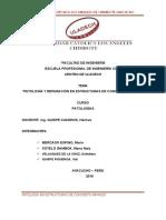 Patologia-trabajo (1) Revisado