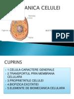 biomecanica celulei