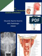 FARINGE. Anatomía y Estudios Contrastados