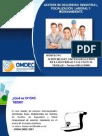 Pptss Modulo Vi Auditoria Del Sistema de Gestion