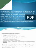 actividad_del_agua.pptx