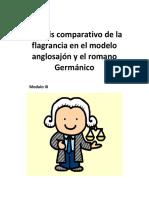 Modulo Flagrancia III