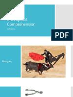 Checkpoint Comprehension Bullfighting