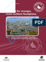 Planning for stronger, more resilient floodplains