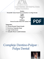Expo Pulpa.pptx